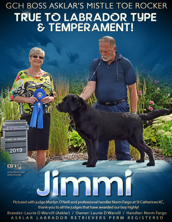 Jimmi and Norm Aug 2019 Ad
